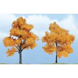 Fall maple. WOODLAND TR1604