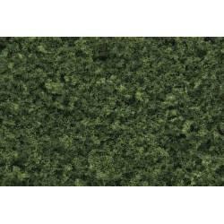 Follaje verde medio.