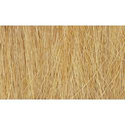 Hierba alta color trigo.