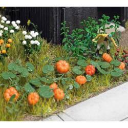 Pumpkin, cucumber and lettuce set. BUSCH 8101