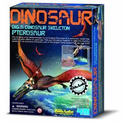 Kit de excavación: Pterosauro.