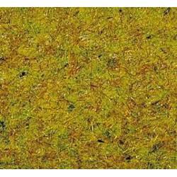 Grass summer meadow. NOCH 08310