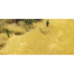 Mata de hierba seca o juncos.