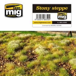 Stony steppe.