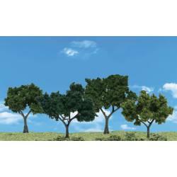 Cuatro árboles de hoja caduca.