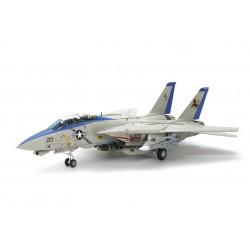 Grumman F-14D Tomcat.