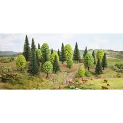 15 árboles variados.