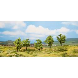 5 árboles frutales.