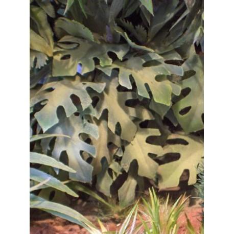 Jungle vegetation. Type 3.