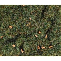4 mm Summer Alpine Grass.