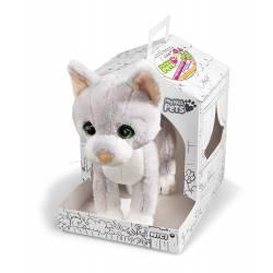 Mascota: gato.