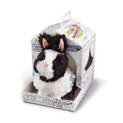 Mascota: conejo.