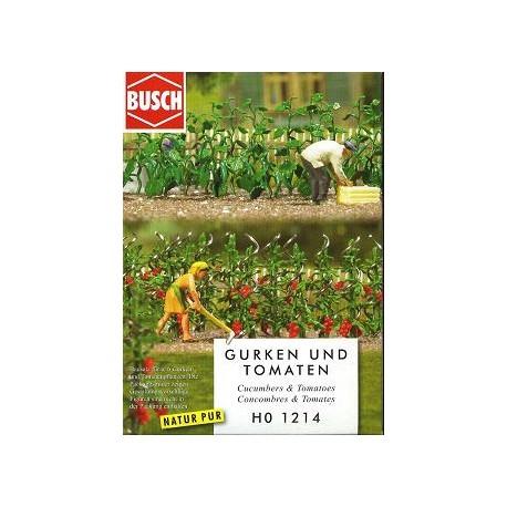 Plantas de huerta: tomates y pepinos. BUSCH 1214