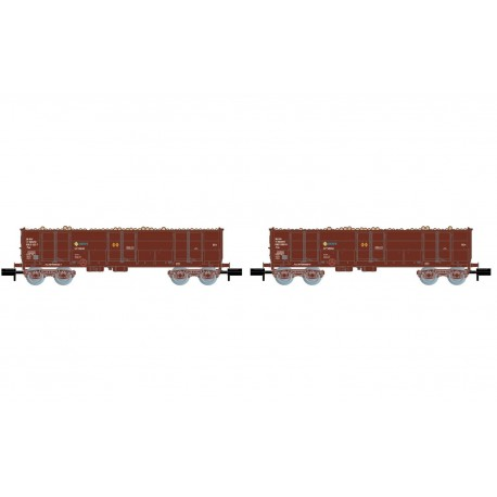 Ealos wagons with load of logs, RENFE