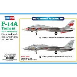 F-14 A Tomcat.