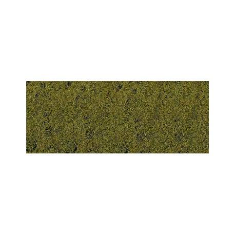 Hierba, verde lima.
