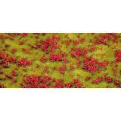 Pradera con flores rojas.