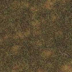 Mata de hierba finales del verano. BUSCH 1304
