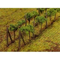 Vines. FALLER 181254