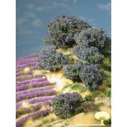 Planta arbustiva en tonos azules. SILHOUETTE 253-08