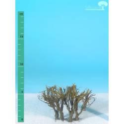 Plantas arbustivas. SILHOUETTE 250-00