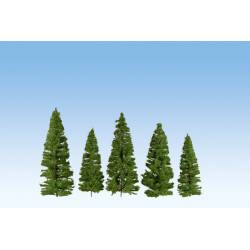 Fir trees, dark green.
