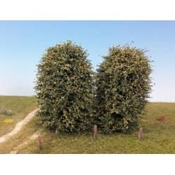 Dos arbustos, principios de otoño.