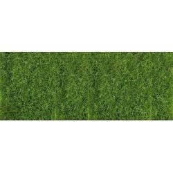 Hierba alta, verde.