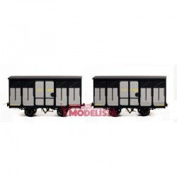 Set closed wagons, Kv 4096 + 4100.