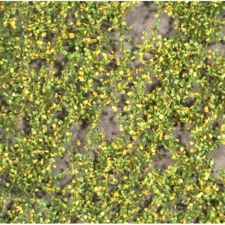 Lombardy poplar foliage. SILHOUETTE 913-23S