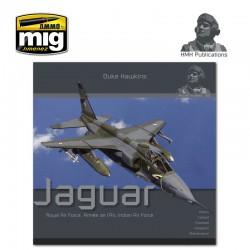 Aircraft in Detail: The Sepecat Jaguar.