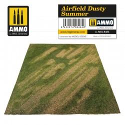 Airfield dusty summer.