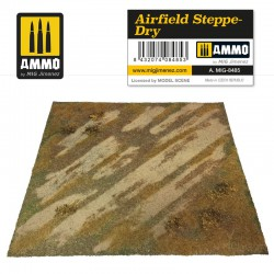 Airfield steppe-dry.