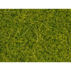 "Scatter grass ""meadow""."