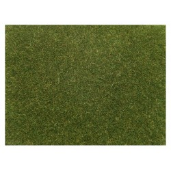 "Scatter grass ""light green""."