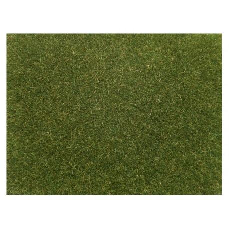 """Scatter grass """"light green""""."""