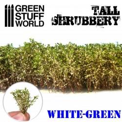 Arbustos altos , blanco verde.