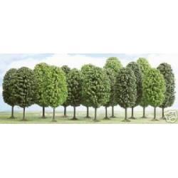 12 deciduous trees.