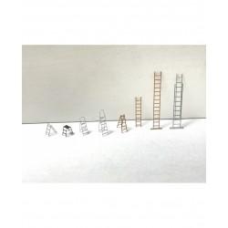 Ladder set.