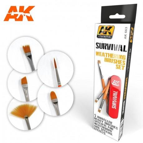 Survival weathering brushes set.