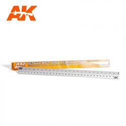 Metallic multi scale triangular ruler.