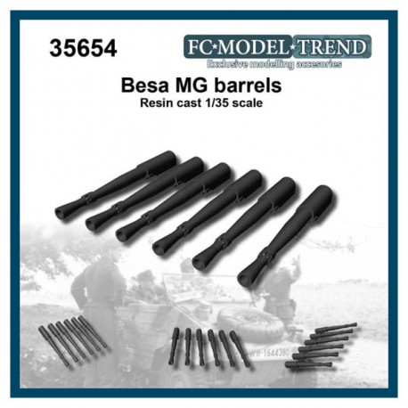 Cañones de Besa MG.