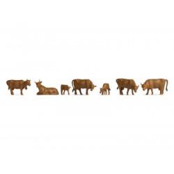 Cows, brown.