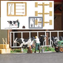Escena rural: veterinario con vaca.