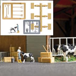 Escena rural: alimentando a un becerro.