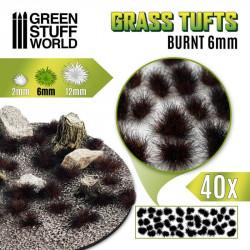 Grass tufts, burnt. 6 mm.