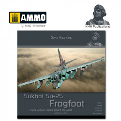 Sukhoi Su-25 Frogfoot.
