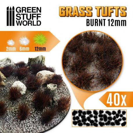 Grass tufts, burnt. 12 mm.