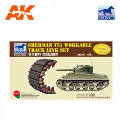 Sherman T51 track.