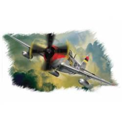 P-47D Thunderbolt.